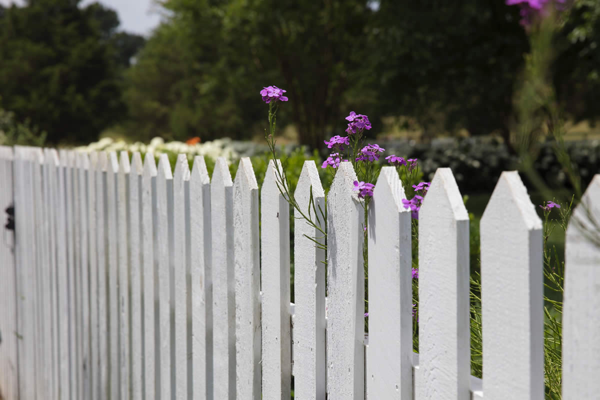 Advantages of Different Wood Fencing Options
