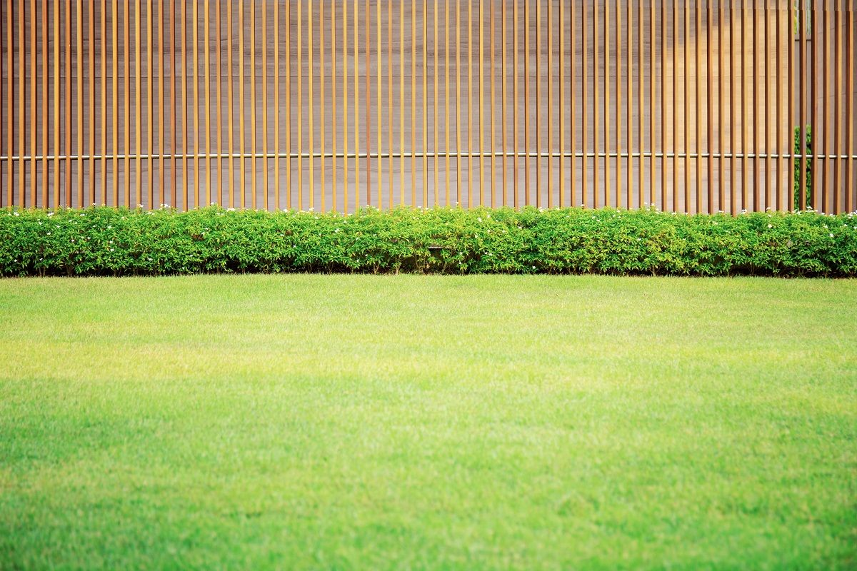 Do You Need a Privacy Fence?